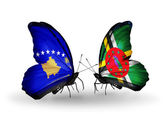 Butterflies with Kosovo and Dominica flags — Foto de Stock