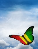 Guinea flag butterfly — Foto de Stock
