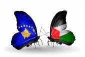Butterflies with Kosovo and Palestine flags — Foto Stock