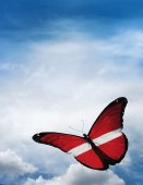 Latvia flag butterfly — Photo