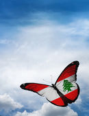 Lebanon flag butterfly — Foto Stock