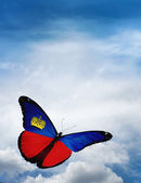 Liechtenstein flag butterfly — Stockfoto