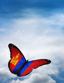 Mongolia flag butterfly — Stock Photo