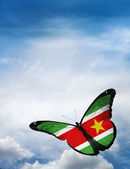 Suriname flag butterfly — Stock Photo