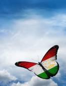 Tajikistan flag butterfly — Stock Photo