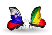 Butterflies with Slovenia and Kongo flags — Stock Photo