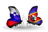 Butterflies with Slovenia and Swaziland flags — Foto Stock