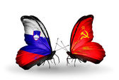 Butterflies with Slovenia and Soviet Union flags — Foto Stock