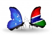 Butterflies with  Micronesia and Gambia flags — Stock fotografie