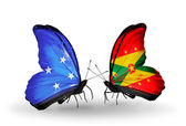 Butterflies with Micronesia and Grenada flags — Foto Stock