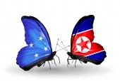 Butterflies with Micronesia and North Korea flags — Foto Stock