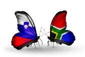 Butterflies with Slovenia and South Africa flags — Foto de Stock