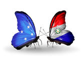 Butterflies with Micronesia and Paraguay flags — Stock fotografie