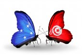 Butterflies with Micronesia and Tunisia flags — Stock fotografie