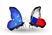 Butterflies with Micronesia and Czech flags — Stock fotografie