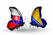 Butterflies with Slovakia and Bosnia and Herzegovina flags — Foto de Stock