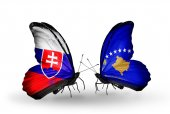 Butterflies with Slovakia and Kosovo flags — Fotografia Stock