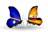Butterflies with Nauru and Brunei flags — Stock Photo