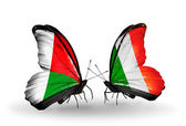 Butterflies with Madagascar and Ireland flags — Stock Photo