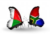 Butterflies with Madagascar and South Africa flags — Stok fotoğraf