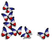 Mariposas de bandera de Schleswig-Holstein — Foto de Stock
