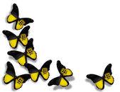 Baden flag butterflies — Stock Photo