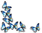 Farfalle della bandiera della Baviera — Foto Stock