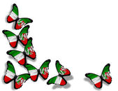 North Rhine-Westphalia flag butterflies — Stockfoto