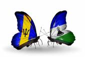 Butterflies with Barbados and Lesotho flags — Stock Photo