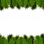 Christmas background with spruce branches — Stock Vector