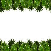 Fondo de navidad con ramas de abeto — Vector de stock