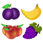 Collection of fruit — Stock Vector