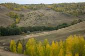 Landscape with ravine hills sky and autumn trees — Stock Photo