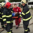 Постер, плакат: Firefighters and rescuers taking away injured on a stretcher by