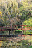 Wooden bridge over mirrored pond in the autumn park — Stock Photo