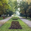 Tree alley and footpath with benches in the autumn park — Stock Photo #57244909