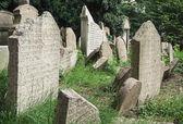 Jewish cemetery in Prague city — Stock Photo