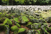 Big stones in the andesite stone sea  — Stock Photo