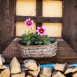 Wooden window with flowers — Stock Photo #71507933