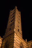 Bell tower of Siena cathedral at night — Foto de Stock