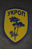 Unformal Pro-Ukrainian nazionalist formations chevron — Stock Photo