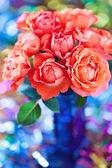 Beautiful fresh roses — Stock Photo