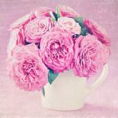 Delicate pink roses . — Stock Photo