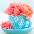 Roses in a blue cup — Stock Photo #65164959