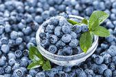 Portion of fresh harvested Blueberries — Stock Photo