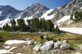 Beautiful Nature Landscape — Stock Photo