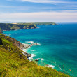 North Cliffs Cornwall — Stock Photo #52913981