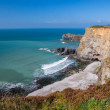 Bassetts Cove North Cliffs Cornwall — Stock Photo #53407299
