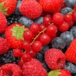 Close-up view on pile of different berries with water drops — Stock Photo #72664839
