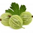 Three ripe green gooseberries with leaf (isolated) — Stock Photo #74123249